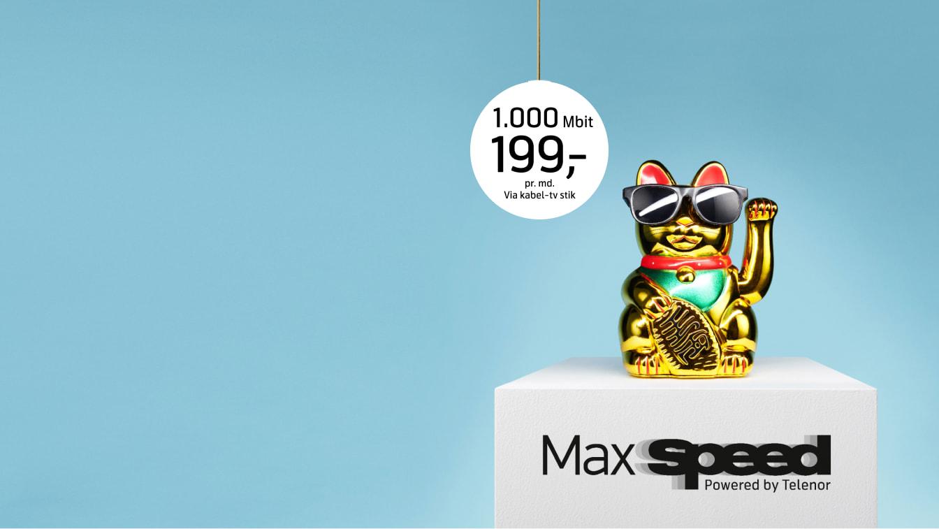Sæt hastigheden op med MaxSpeed internet