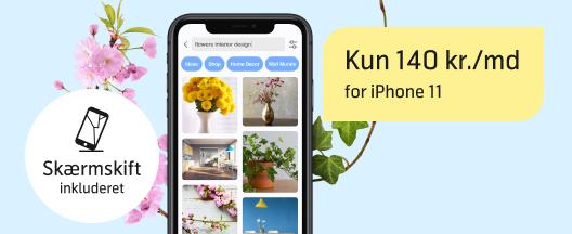 Stærk pris: iPhone 11 med fri data